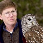 Scott Weidensaul, a nature author from Schuylkill County, handles a barred owl at Hawk Mountain Sanctuary in Albany Township.  2/11/03  Photo by Bill Uhrich